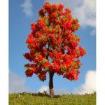 ağaç10