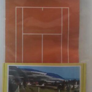 tenis sahası 100