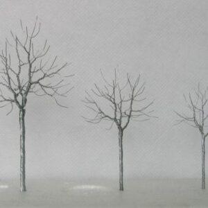 ağaç gövdesi