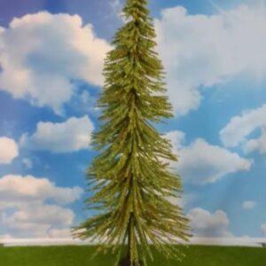 ağaç4207 tea green